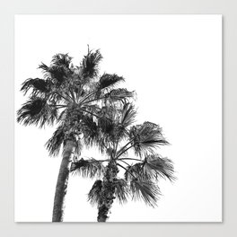 B&W Palm Tree Print | Black and White Summer Sky Beach Surfing Photography Art Canvas Print