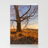 country Stationery Cards featuring Country by Scottie Williford