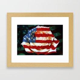 American Rose Framed Art Print