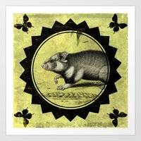 hamster Art Prints featuring Little Hamster by Connie Goldman