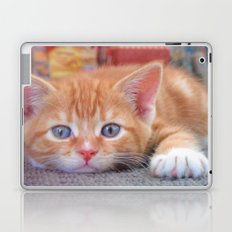 Cleo the Christmas Cat Laptop & iPad Skin