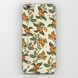 Oranges Pattern iPhone Skin