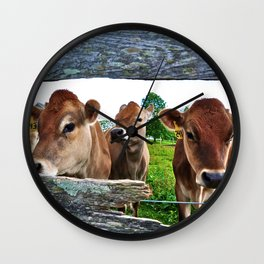 The Other Side Of The Fence Wall Clock