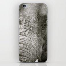L'Éléphant iPhone & iPod Skin