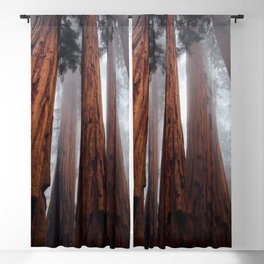 Woodley Forest Blackout Curtain