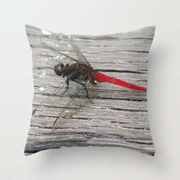 Dragon-Fly with red tail Illustration Throw Pillow