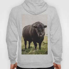 Big Black Angus Bull Hoody