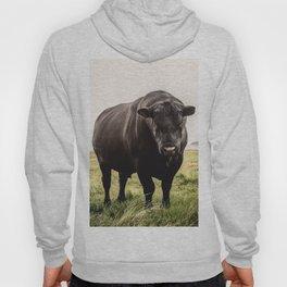 Big Black Angus Bull Hoody