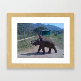 elephant nature park Framed Art Print