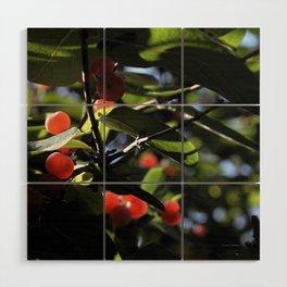 Jane's Garden - Sunkissed Red Berries Wood Wall Art