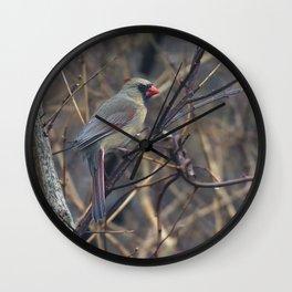 Female Northern Cardinal Wall Clock