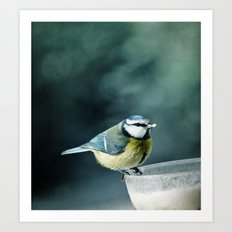 Lunch Time ! ! ! Art Print