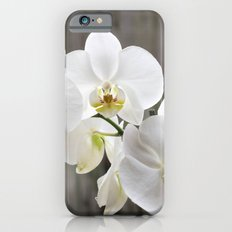 Pure Orchid Slim Case iPhone 6s