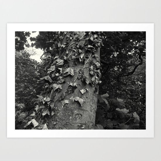 Climb... Art Print