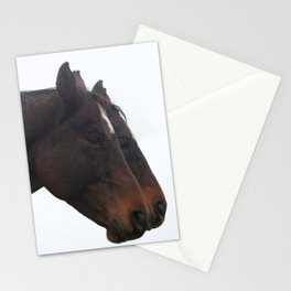 Twin Horses Photography Print Stationery Cards