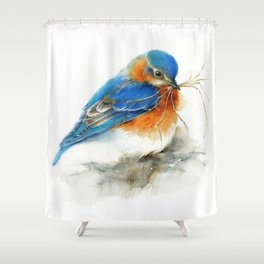 Eastern Bluebird Nesting Shower Curtain