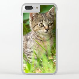 Beautiful Baby cat in the Grass Clear iPhone Case