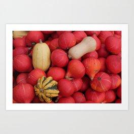 gourds 2, color photo Art Print
