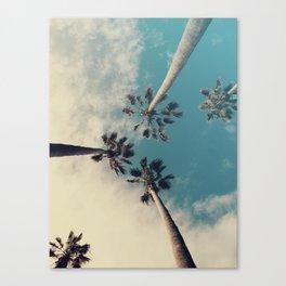 Palm tree, Tropical decor Canvas Print