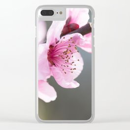 Spring blooming Clear iPhone Case