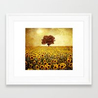 sunflowers Framed Art Prints featuring lone tree & sunflowers field by Viviana Gonzalez