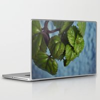 swedish Laptop & iPad Skins featuring Swedish ivy by Camaracraft
