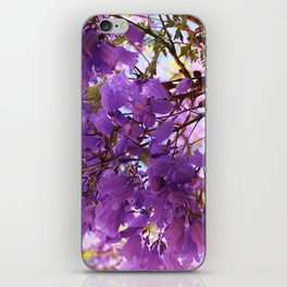 Jacaranda Blossoms iPhone Skin