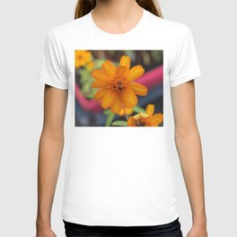 Zinnia Starbright T-shirt