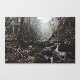 Stevens Glen X Canvas Print