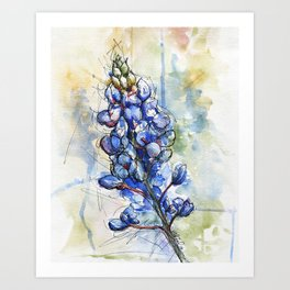 Spring Watercolor Texas Bluebonnet Flowers Art Print