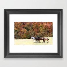 Horses Valley Framed Art Print