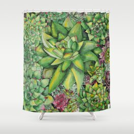 Watercolour Succulents Shower Curtain