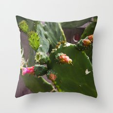 Summer Cactus in Flower Throw Pillow