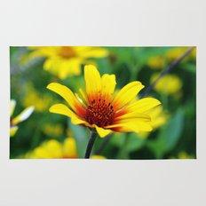 Prairie Flower Rug