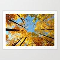 Fall Skies Art Print