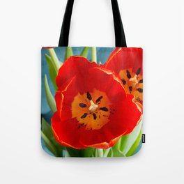Red Tulips on Rich Teal  Tote Bag