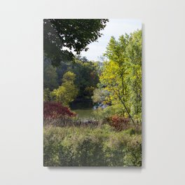 It is starting to look like Fall!! Metal Print