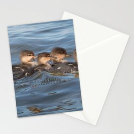 Momma and ducklings Stationery Cards