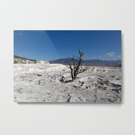 Single dead tree in natural mineral stone Metal Print