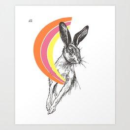 Rainbow Collection / rabbit Art Print