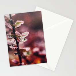 Enchanting Stationery Cards