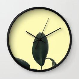 ficus elastica the nature series Wall Clock
