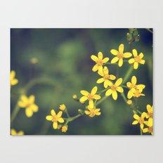yellow bursts Canvas Print