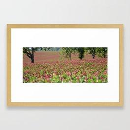 Clover Fields Framed Art Print