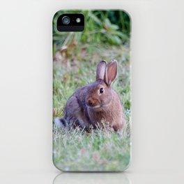 Bunny Rabbit2 iPhone Case