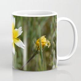tidy tips Coffee Mug