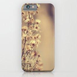 Sunday flowers iPhone Case