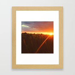 Sunset atop of the Hill Framed Art Print