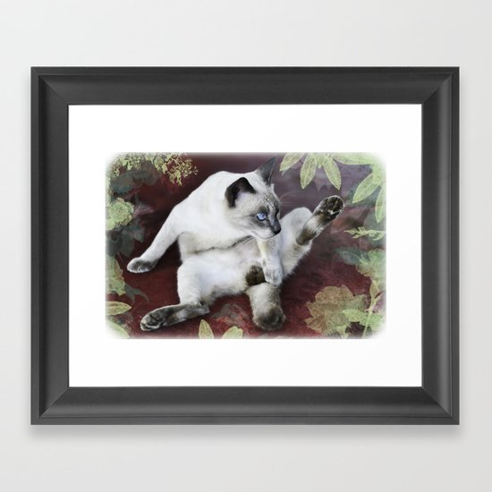 obscene cat Framed Art Print