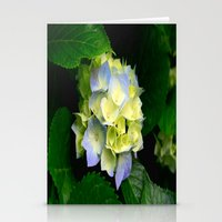 hydrangea Stationery Cards featuring Hydrangea  by Chris' Landscape Images & Designs